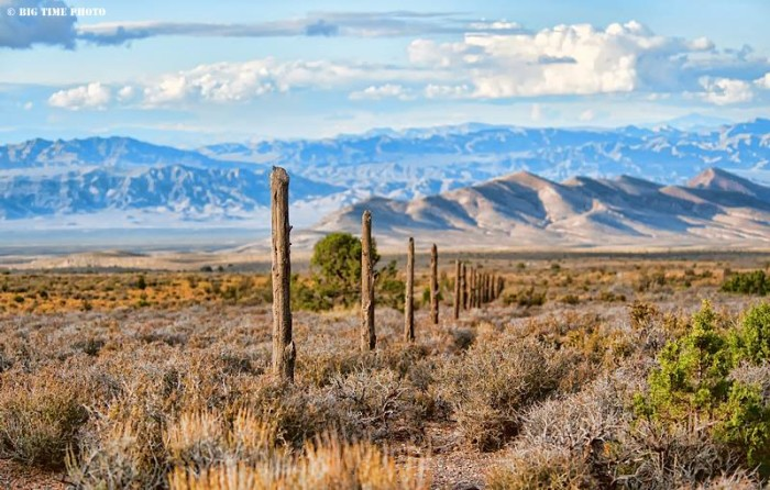 12. A peaceful photo captured in Cold Creek, Nevada.