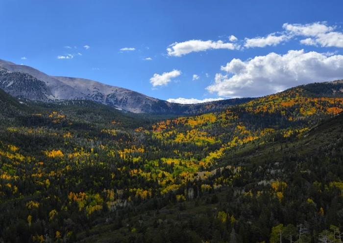 4. Great Basin National Park