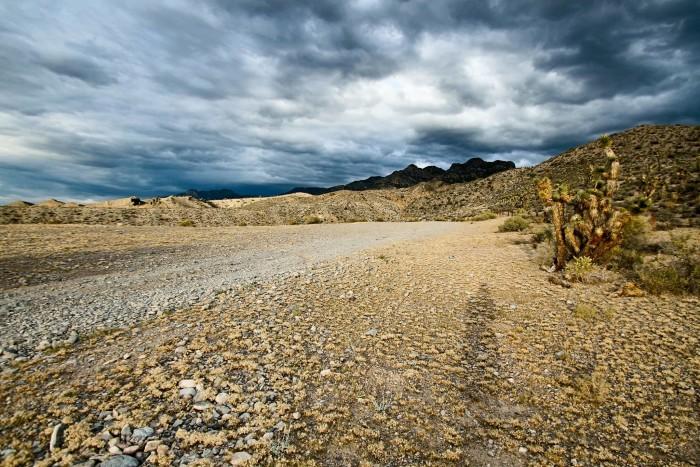 9. Deadman Canyon