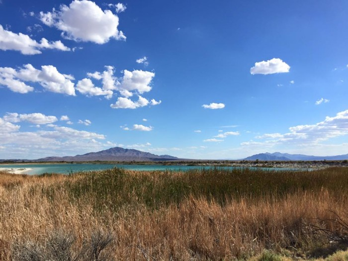 7. Ash Meadows National Wildlife Refuge