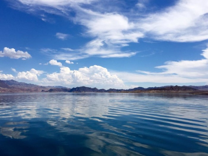 7. A calming view of Lake Mead.