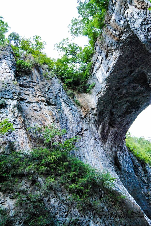 11. This stunning perspective of Natural Bridge was submitted by Wesley Summers.