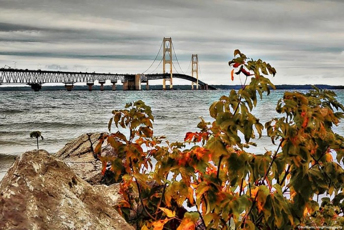 7) Northern Living Photography documented fall time next to the south end of Mackinac Bridge.