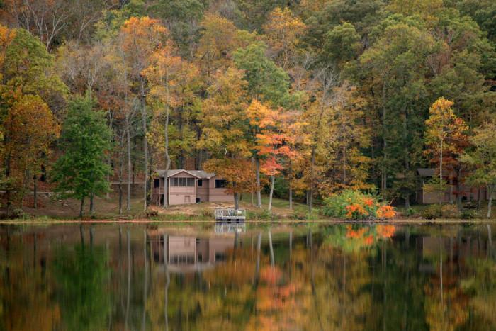 1. Pennrile Forest State Resort Park