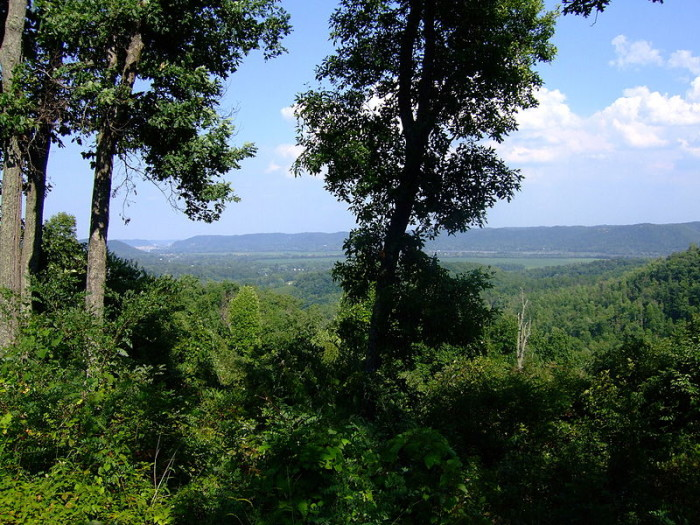 8. Shawnee State Forest (Scioto and Adams counties)