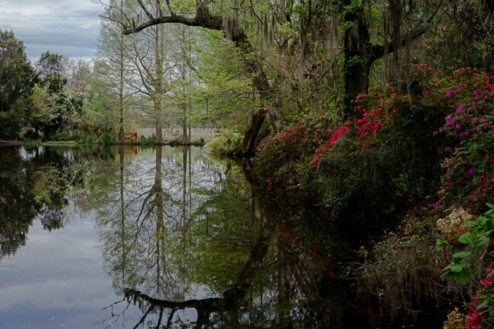 23. Magnolia Plantation in April. Ray Richards definitely knows composition. This photograph is stunning.