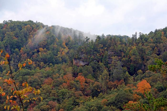 3. Red River Gorge from the bridge