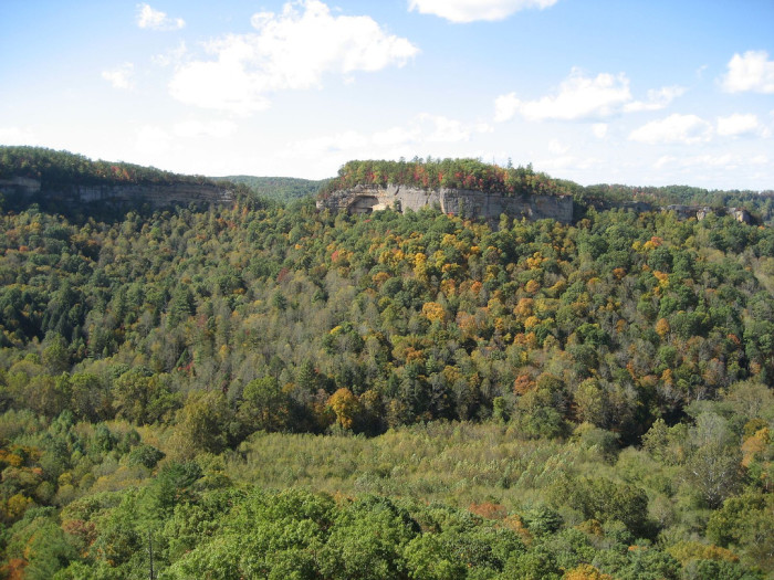4. Red River Gorge
