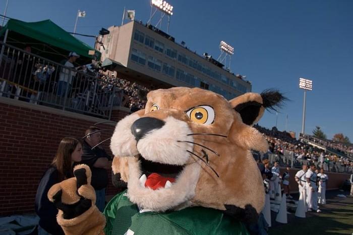 2. ...Rufus the bobcat...