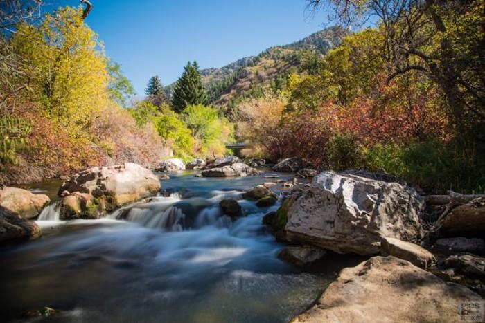 8. Scott Ricks shared this photo of Utah's autumn beauty.