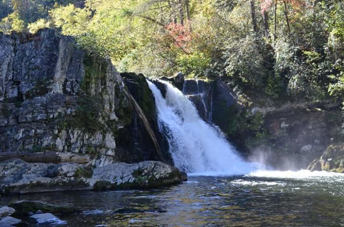 2) Only Sherry Sharpless Johnston could capture Abrams Falls so perfectly.