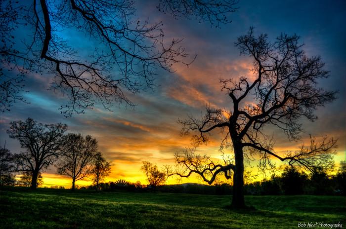 8. Sunrise at McIntire Park in Charlottesville.