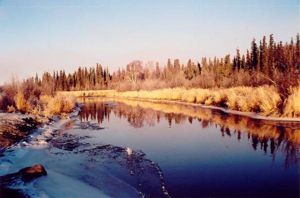 6) Swanson River