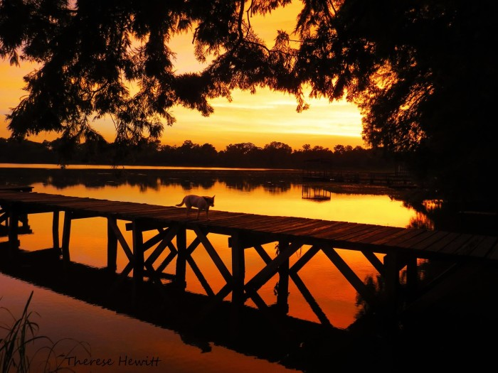 10) Sunset over Lake Bruin  by Therese Hewitt