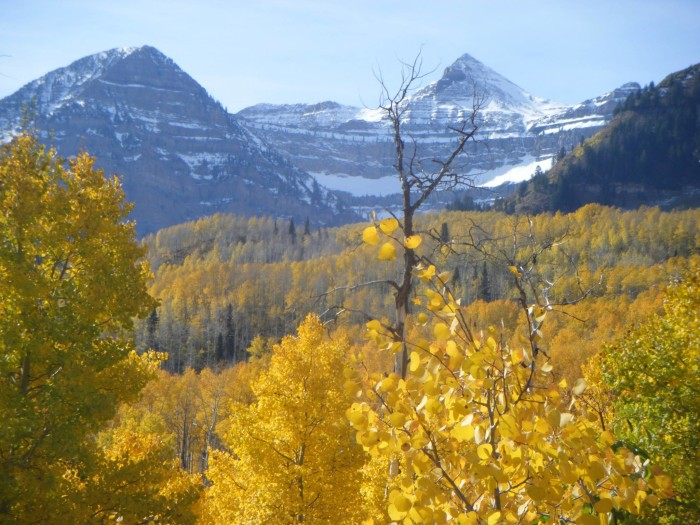 17. Tona Dyer's photo of Utah's mountains even includes a little snow!