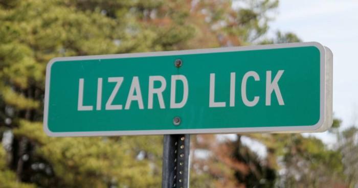 6. Lizard Lick