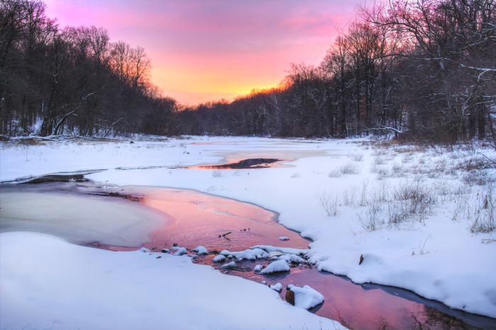 6. Another shot by Joshua Siniscal, this was taken at Watchung Reservation.
