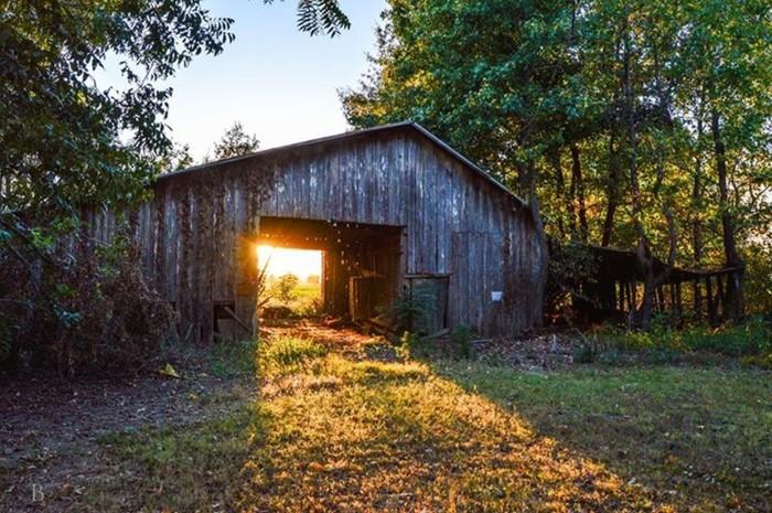 9. Arkansas County Barn by Brian Patrick Box