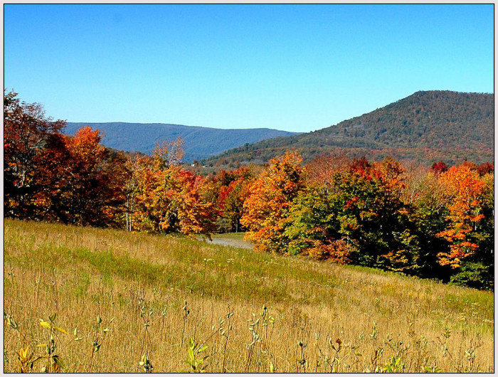 11. Canaan Valley State Park