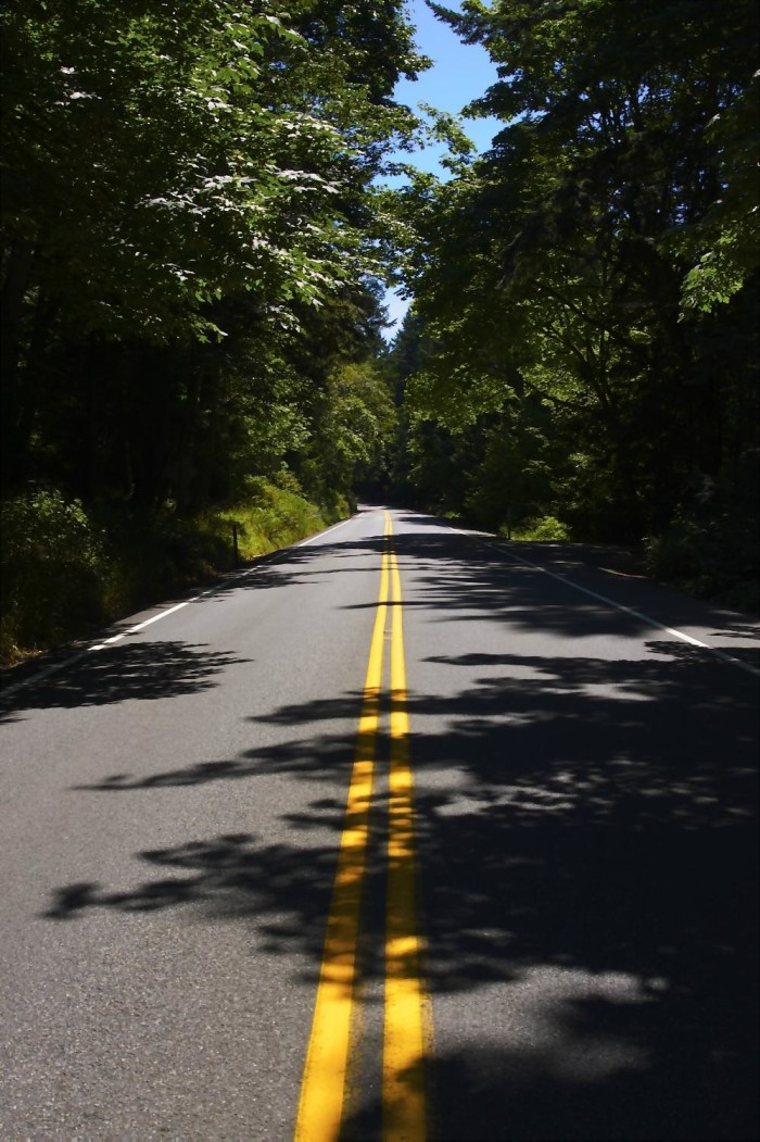 8. Go for a picturesque road trip along Chuckanut Drive.