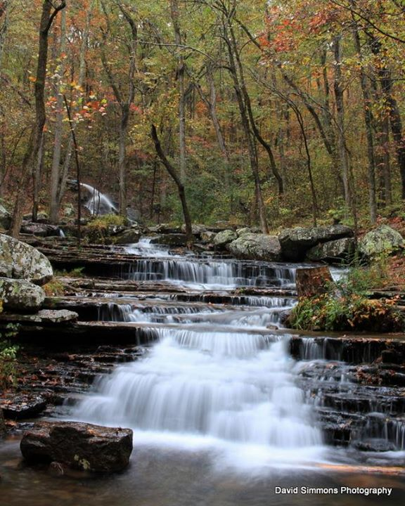 4. Collins Creek by David Simmons Photography