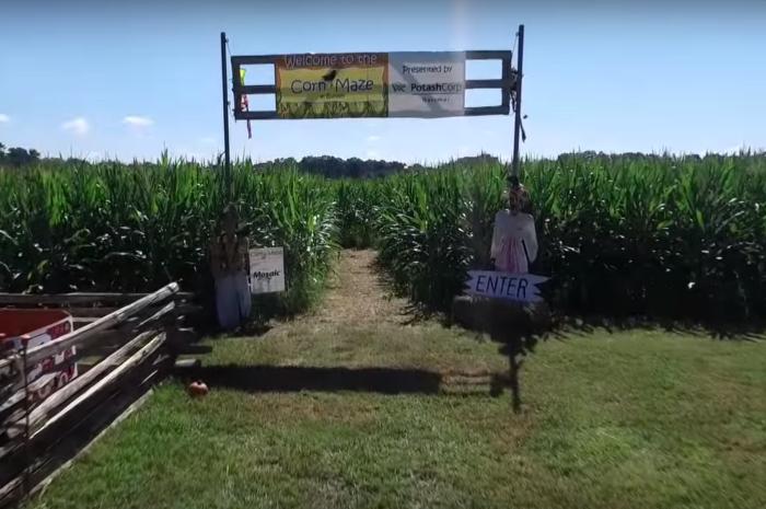 6 Amazing Corn Mazes In Louisiana This Fall