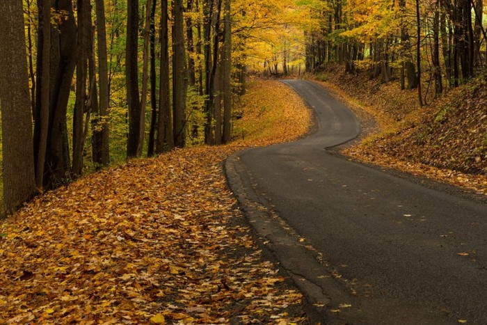 7. Kevin King took this great shot of a country road in Fayette County.