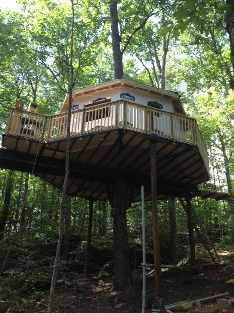 3 Treehouses You Can Rent In West Virginia
