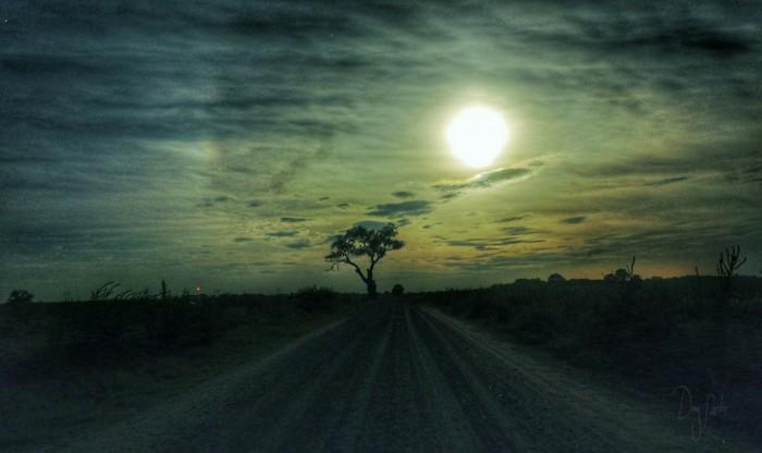 14. Blood Moon by Doug Nordin