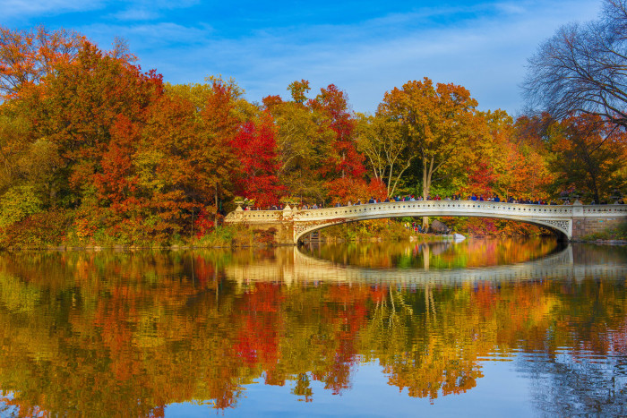 5. But New York State isn't just skylines. The Fall foliage at Central Park is gorgeous.