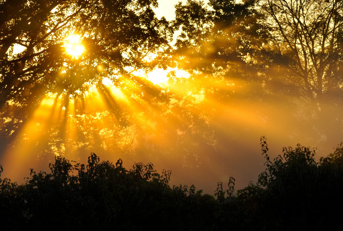 8) Fall sunrise