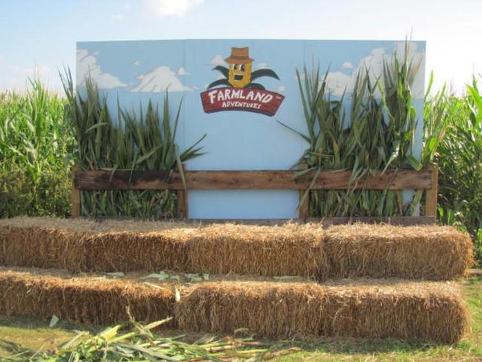 1. Farmland Adventures