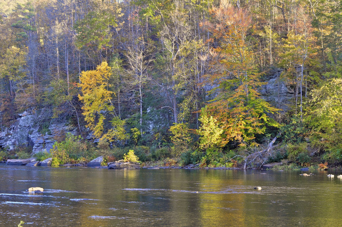 8. The Greenbrier River
