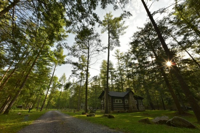 4. Greenbrier State Forest