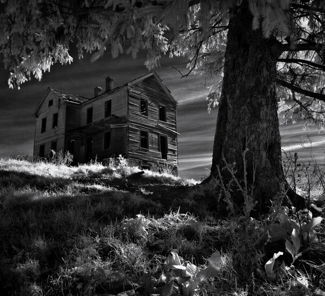 7. The Cunningham House, Allamakee County