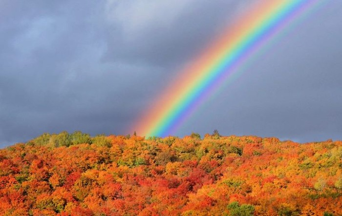 3) This extreme rainbow over peak foliage, shot by John H. Knox, Vermont Four Seasons Photography.