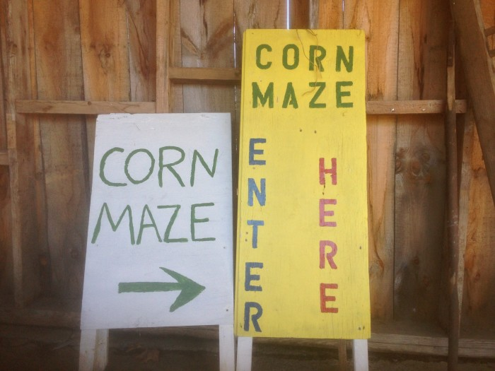 8) The Isham Family Farm maze in Williston.