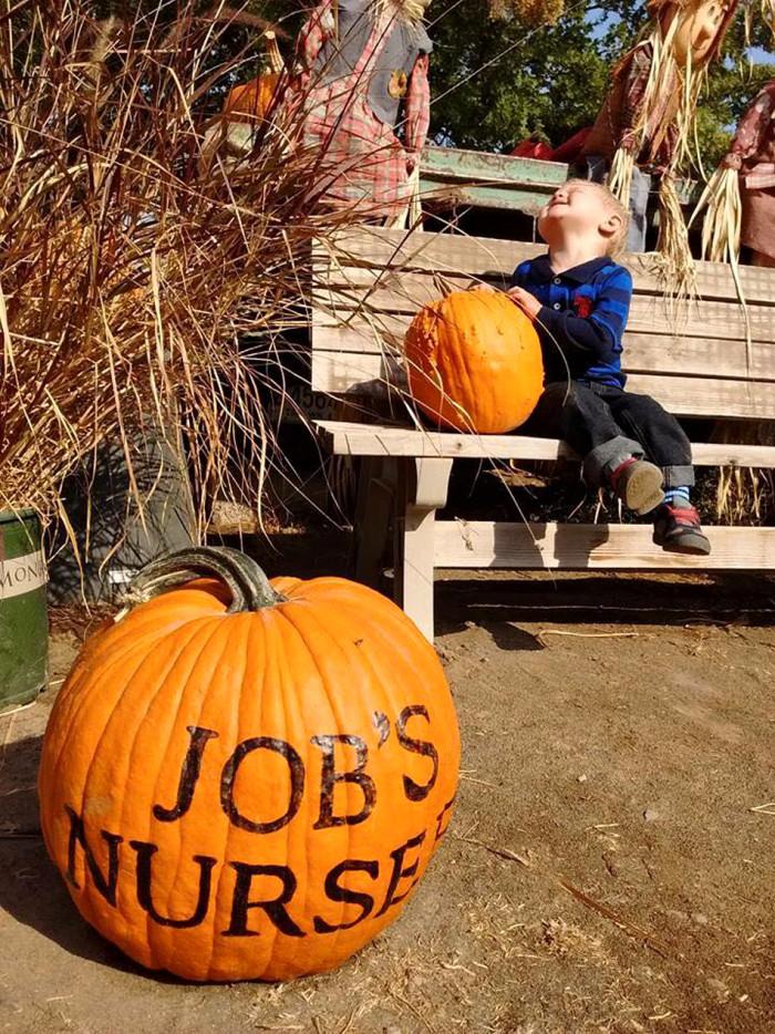7. Job's Nursery, Pasco
