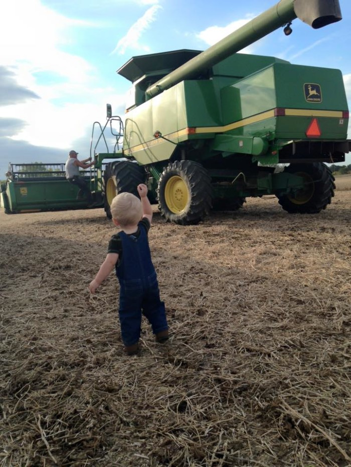 7. A young boy's first time in the field with a combine in Seneca County