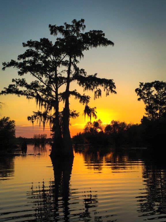 9) Sunset on the Henderson Swamp in Bayou Fuseil by Kurt Trahan