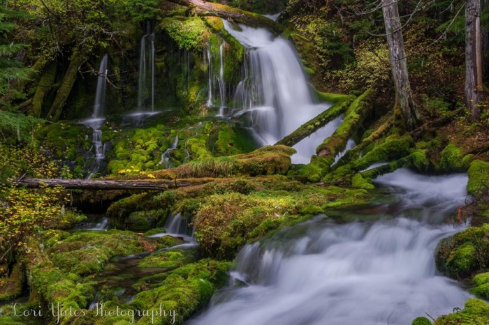 3. This magical shot of the three-tiered Big Spring Creek Falls was taken by Lori Yates in the Gifford Pinchot National Forest!