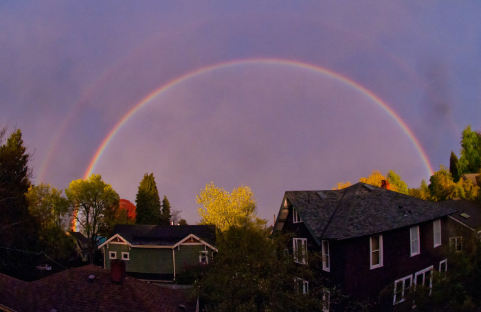 9. Double the beauty at Madrona Park in Seattle!
