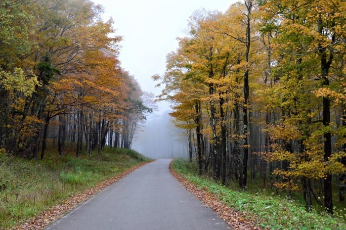 5. This photo of a misty road on Spruce Knob.