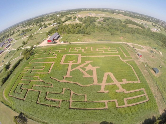1. Visit a corn maze and enjoy fall festivities. This one pictured below can be found at Orr Family Farm.