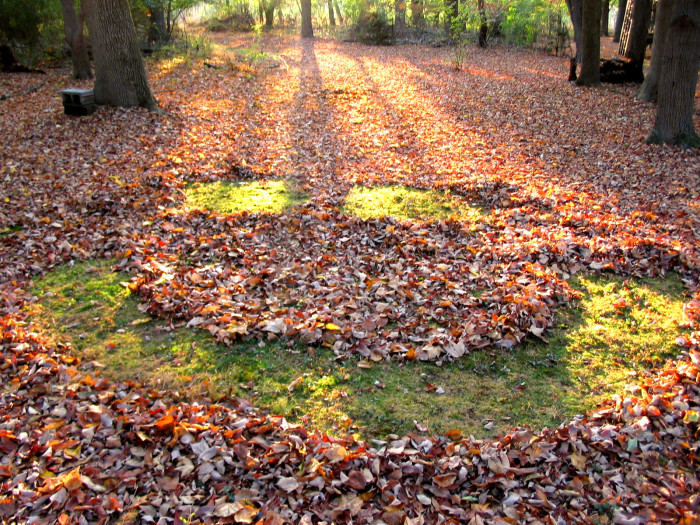 3. Rake those bunches and bunches of leaves that are starting to fall.