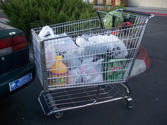 5. Grocery shopping would be much more difficult without the invention of the shopping cart.