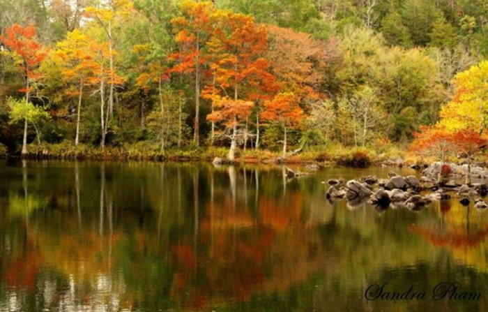 10 Sandra C. Pham caught these fall colors just right in  Broken Bow.