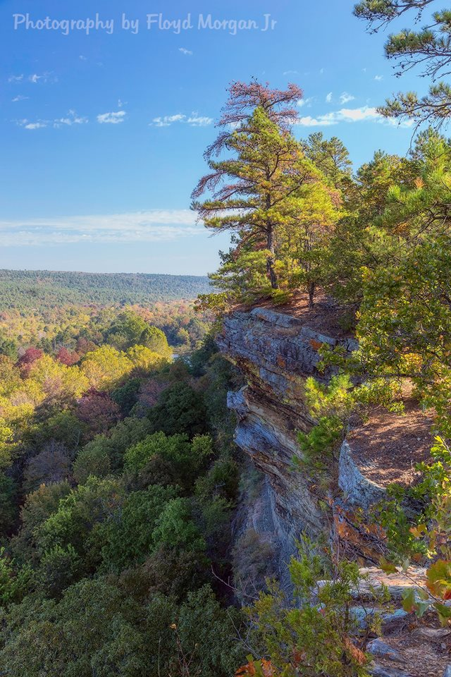 15. The fall foliage is gorgeous from Bee's Bluff.