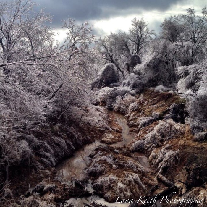 9. Sandy Creek is looking frigid during this winter freeze in 2014.