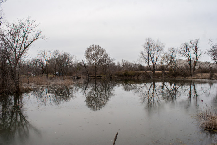 A contaminated body of water in Picher.